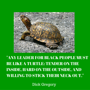 Turtle leadership